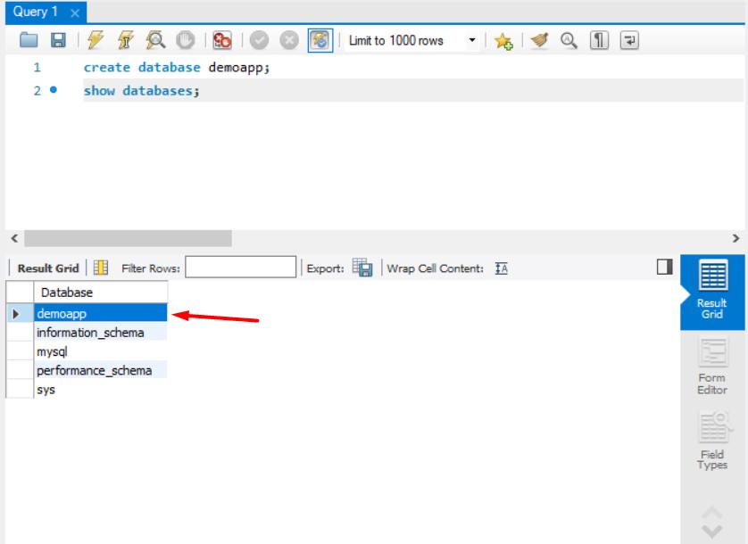 show databases mysql java spring